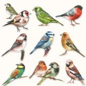 Craft Emotions Napkins 5pcs - Collection of Birds - 111331/0165